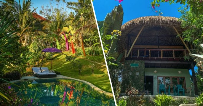 You Can Now Stay In A Tree House In Bali For 44 A Night