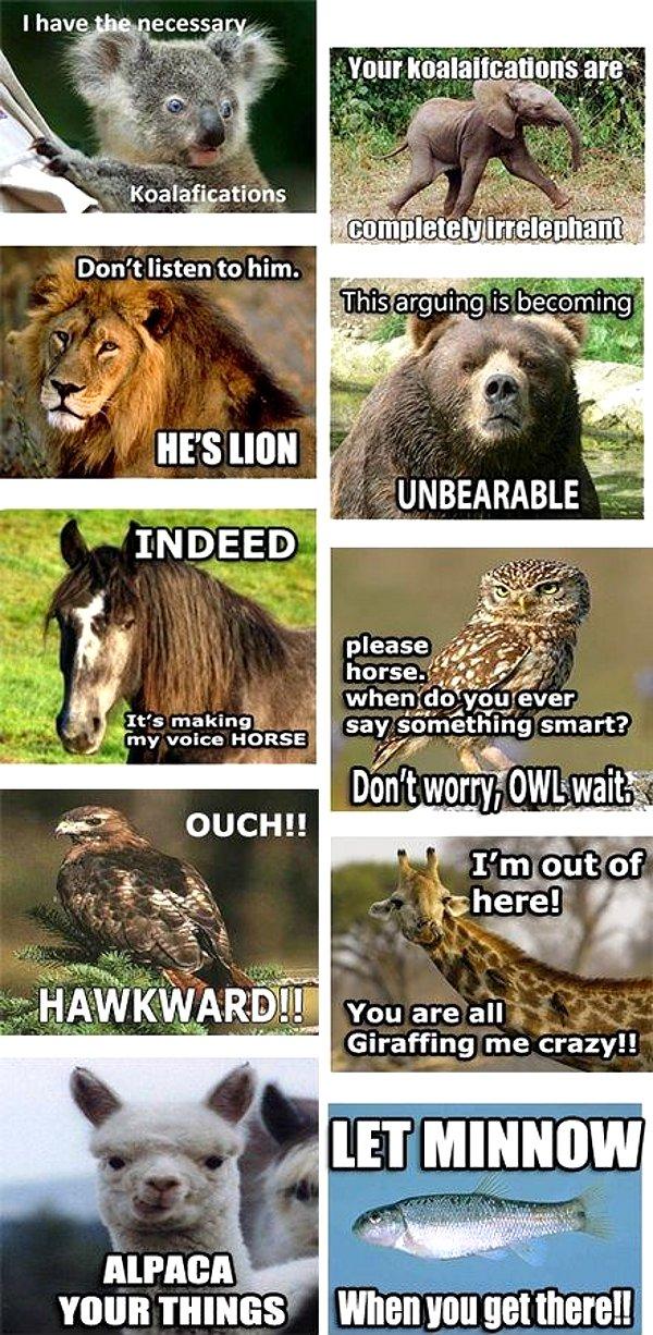 Afbeeldingsresultaat voor animal puns conversation
