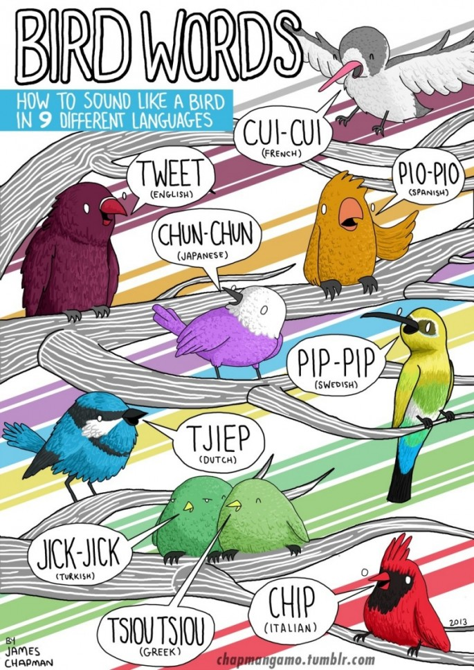 Animal Sounds in Different Languages - Bird