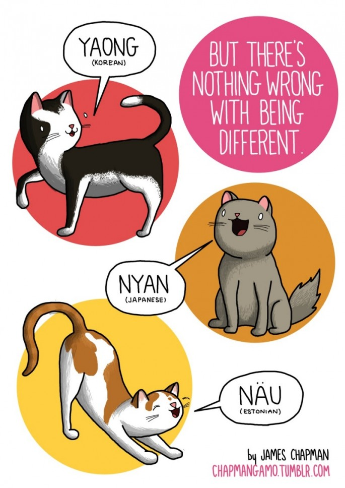 Animal Sounds in Different Languages - Cat 2