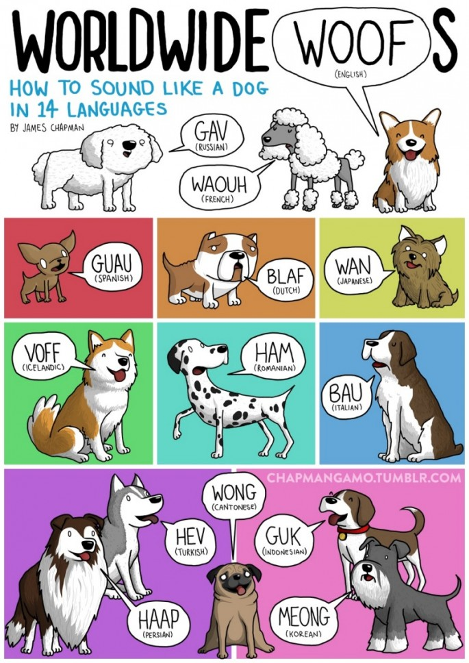 Animal Sounds in Different Languages - Dog