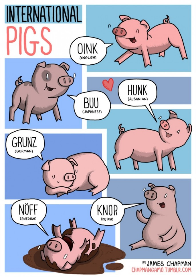Animal Sounds in Different Languages - Pig