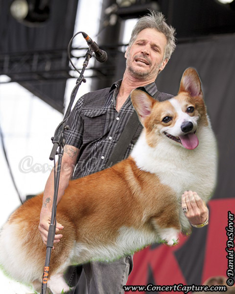 Bass Players Carrying Dogs - 02