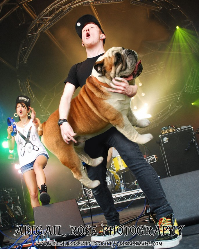 Bass Players Carrying Dogs - 03