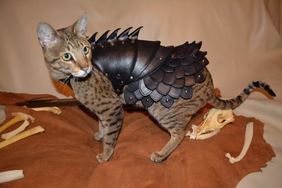 Battle Armor for Cats - 03
