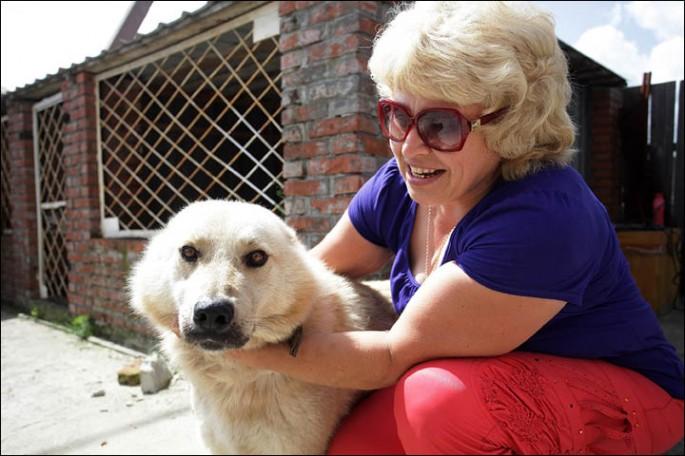 Dog Guards Home Despite Flood - 05