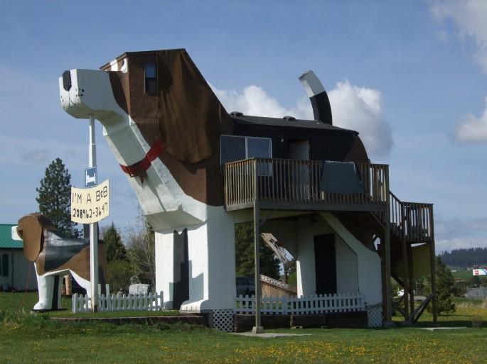 Dog Inn 3