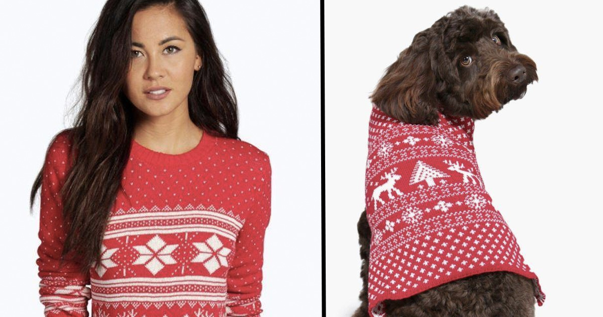 You Can Now Get Matching Dog And Human Christmas Jumpers 22 Words