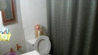 Picture of a bathroom wall and half of the toilet.