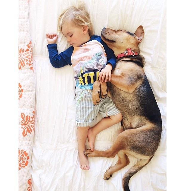 Napping Boy and Puppy 03