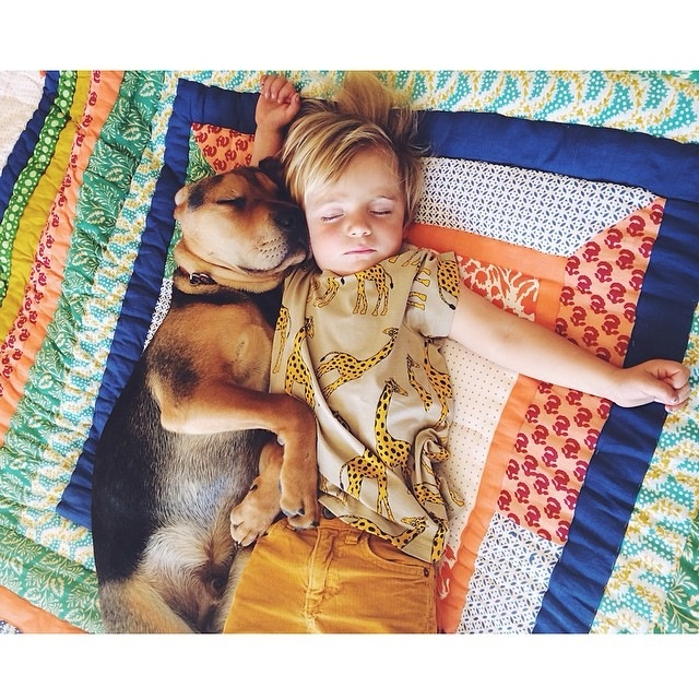 Napping Boy and Puppy 04