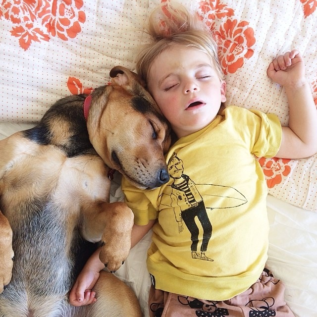 Napping Boy and Puppy 06
