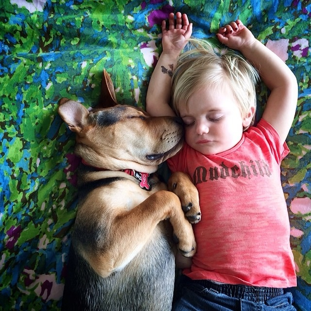 Napping Boy and Puppy 16