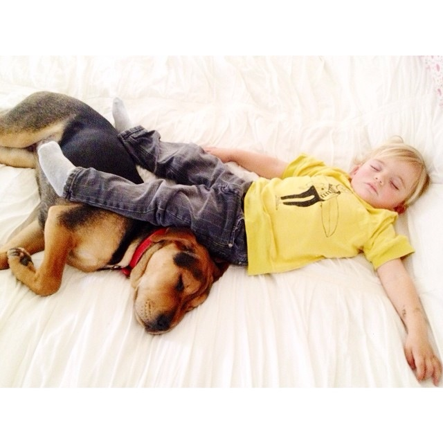Napping Boy and Puppy 24
