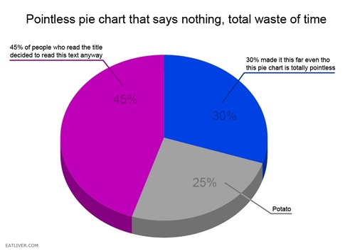The 60 Silliest Pie Charts On The Internet 22 Words