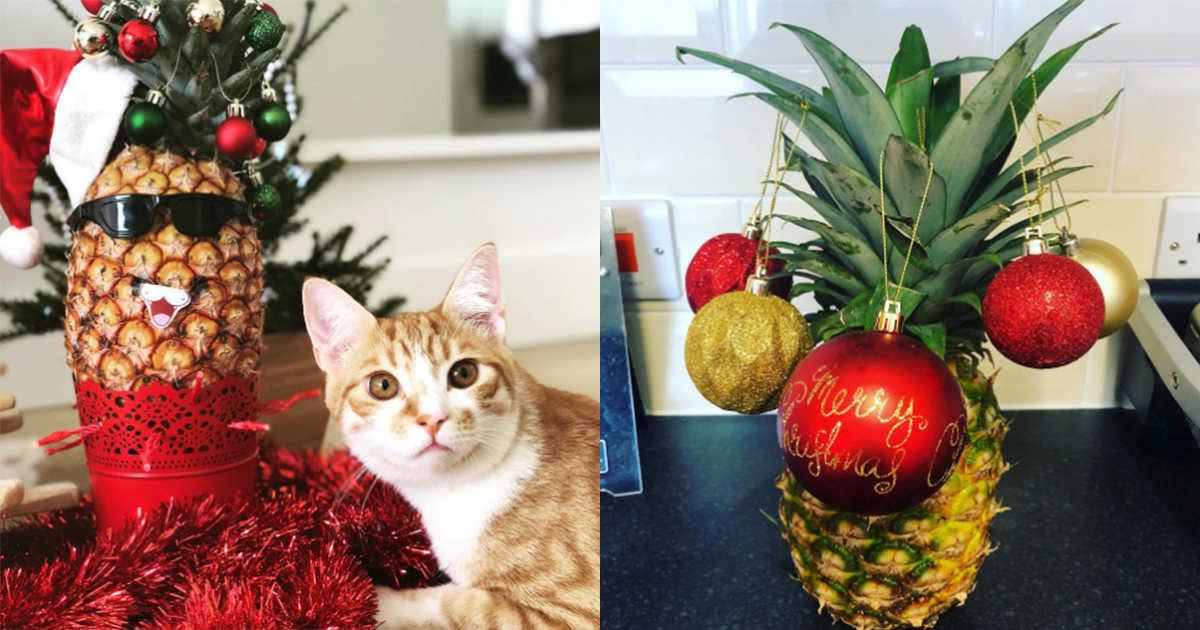 pineapple christmas trees are the newest festive decoration - Merry Christmas In Hawaiian Language
