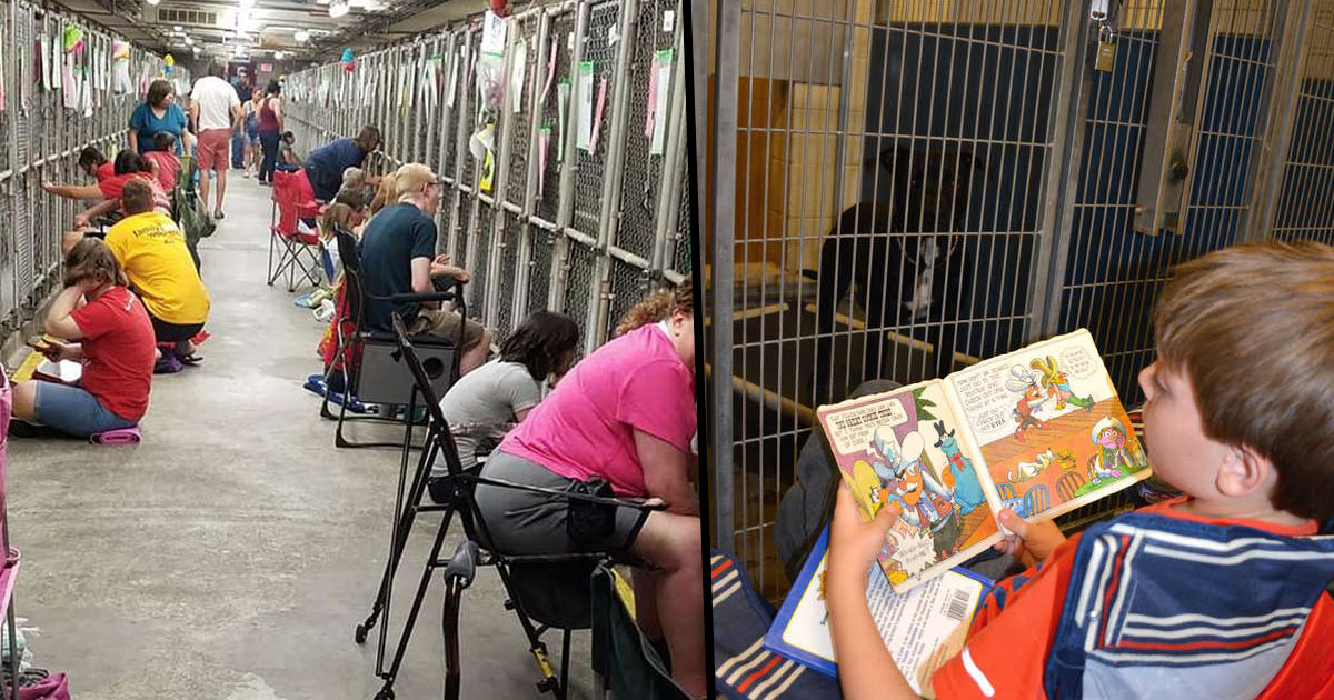People Skipping Fireworks on July 4th to Comfort Shelter