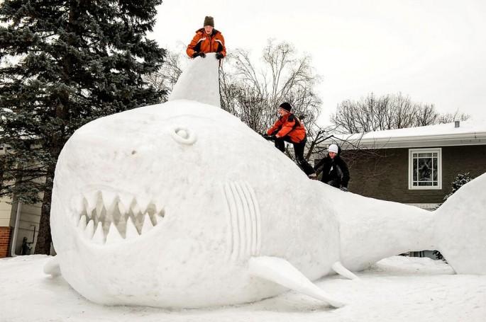 Snow Shark 1