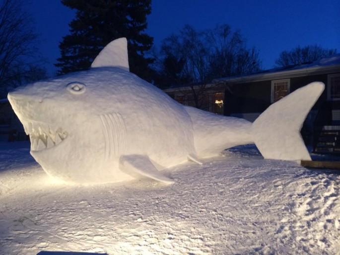 Snow Shark 5
