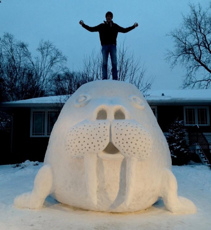 Snow Walrus 2