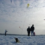 Winter Kite Festival 4