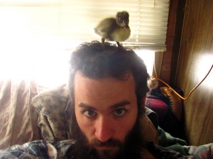 beard nest (2)