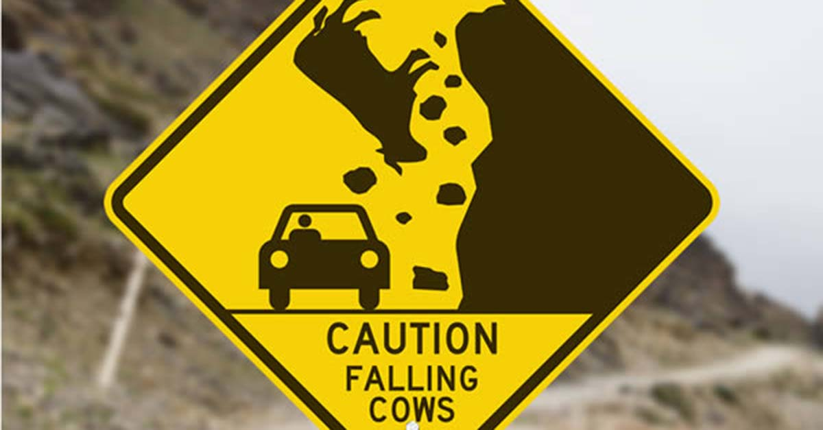 12 Ridiculous Road Signs You Ll Have To See To Believe 22 Words