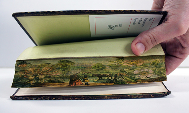 fore edge painting - 06
