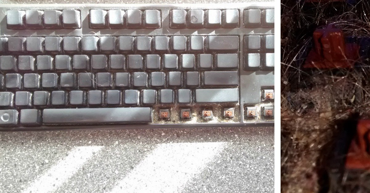 This Is What Happens When You Dont Clean Your Keyboard For 6 Years