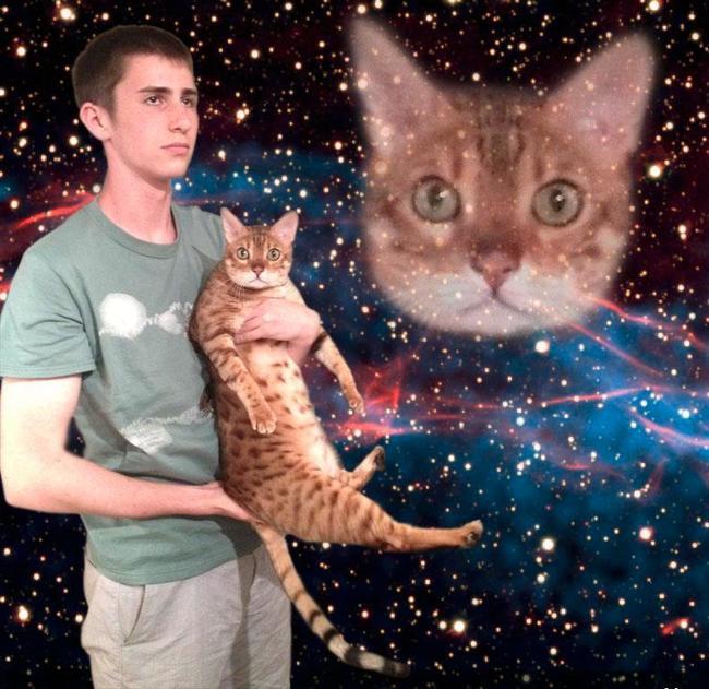 starrycat