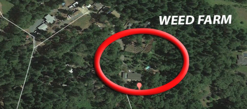 10 Times Google Maps Caught Criminals In the Act | 22 Words on