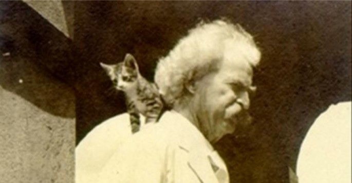 mark twain and his cats  10 pictures