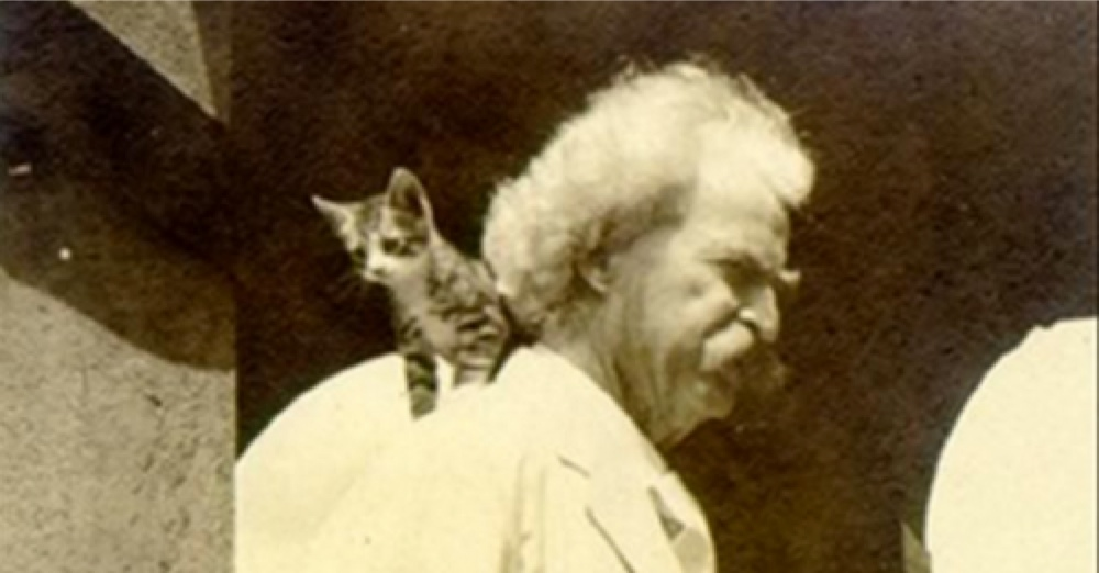 Mark Twain And His Cats 10 Pictures 22 Words